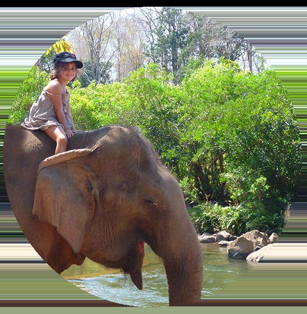 ayuthaya with kids thailand family travel