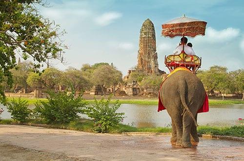 Ayutthaya en famille - activité - éléphant - temple - visite thailande