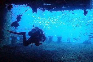 Koh Chang en famille - plongée sous marine - thailande