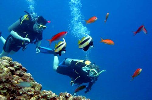 Pattaya en famille - activité - plongée sous marine - diving - snorkeling