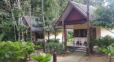 hotel khao sok pas cher