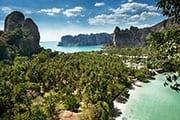 thailande - krabi - plage - cocotier - palmier - paysage paradisiaque