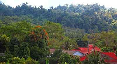 vue-hotel-khao lak-thailande