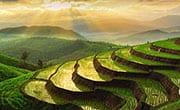 thailande en famille - riziere - paysage - chiang mai - coucher de soleil