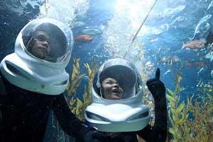 activité a bangkok-aquarium-attraction-insolite-scaphandre-famille-enfant